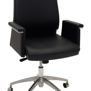 pelle-executive-medium-back